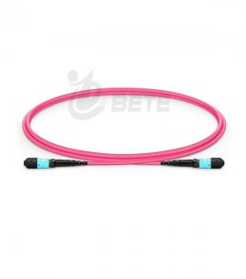 1m (3ft) MTP Female 12 Fibers Type B Plenum (OFNP) OM4 50/125 Multimode Elite Trunk Cable, Magenta